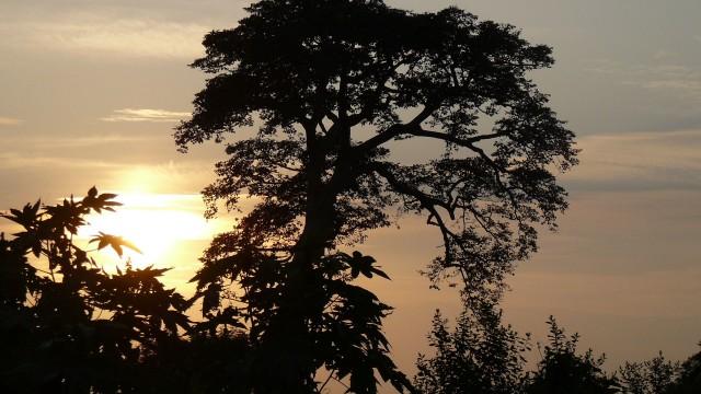Visages du Bénin