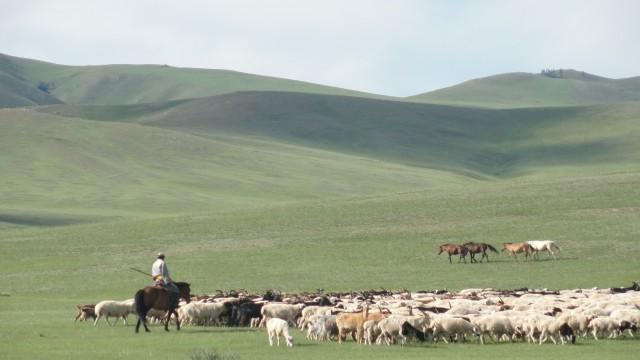 Mongolie, vers l'infini et au-delà
